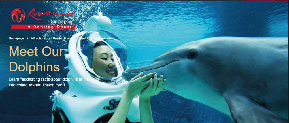 screengrab: http://www.rwsentosa.com/language/en-US/Homepage/Attractions/DolphinIsland/MeetOurDolphins