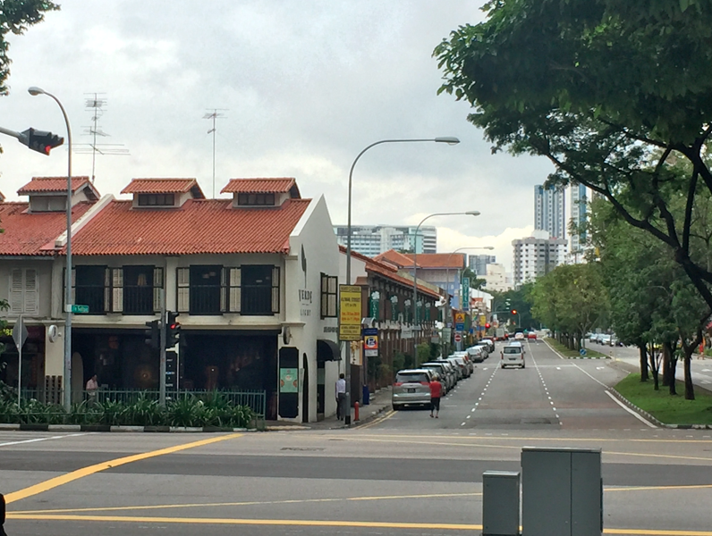 Shophouses along Jalan Sultan