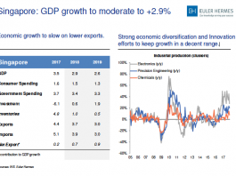 Singapore's GDP growth to moderate to +2 9%: Euler Hermes