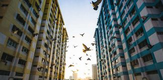 how-to-monetise-your-hdb-flat-for-retirement-in-singapore